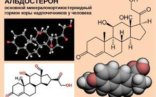 Соматотропный гормон повышен: диагностика, признаки и методы лечение