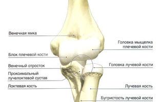 Мрт локтевого сустава — когда нужно делать и о чем может рассказать?
