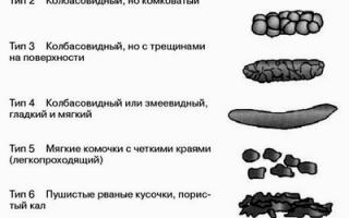 Анализ кала на эластазу: норма фермента, причины отклонения и возможные заболевания