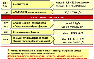 Анализ крови печеночные пробы: расшифровка основных показателей