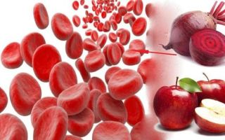 Гемоглобин у взрослых: норма, причины отклонения и способы нормализации белка в крови