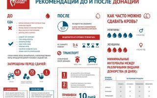 Что можно есть перед сдачей крови на анализ: основные правила подготовки