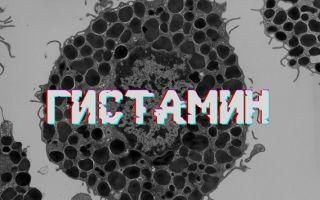 Гистамин — что это такое и каково его значение для организма?