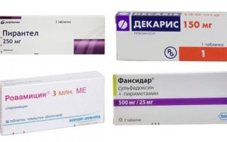 Токсоплазмоз у мужчин: симптомы, лечение и профилактика