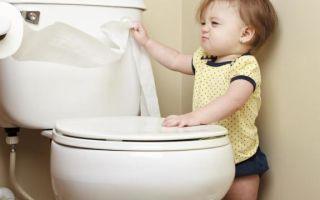 Расшифровка анализа кала на копрологию у детей — норма показателей и причины отклонения