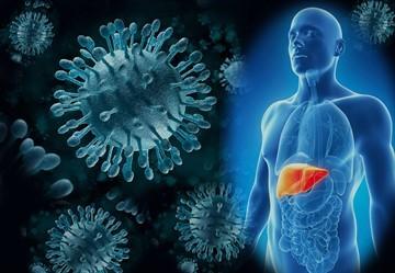 Ревакцинация против гепатита В: кто входит в группу риска