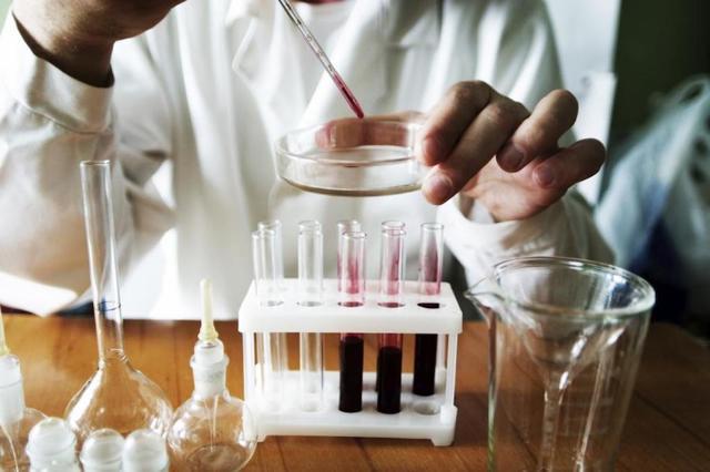 Поджелудочная железа: что выделяет, функции и методы обследования органа