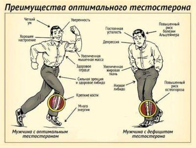 Какая норма тестостерона у мужчин: отклонение от нормы, симптомы