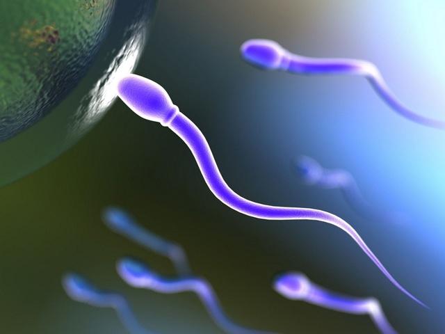 Расшифровка анализа спермы: норма, отклонение от нормы и возможные заболевания