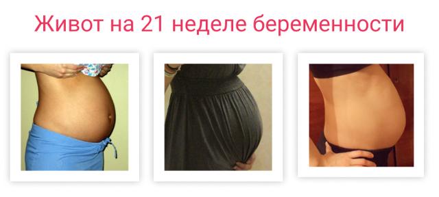 21 неделя беременности: развитие и размеры плода, правильное питание для беременной