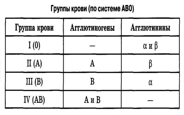Четвертая положительная группа крови: совместимость и причины несовместимости