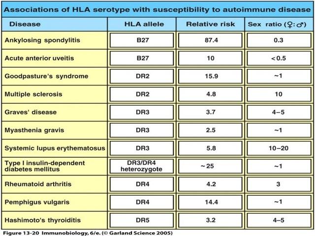 аутоиммунные заболевания - список, ссылки на полезную информацию