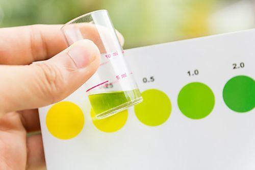 Почему моча зеленого цвета: причины и возможные заболевания