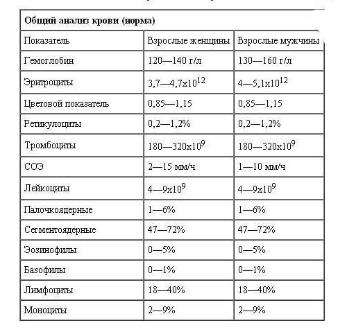 Анализ крови ПТИ: расшифровка, норма, отклонения