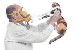 Как называется анализ на аллергию: назначение и основные виды