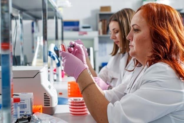 Диагностика при беременности: антитела в крови, их норма и отклонение
