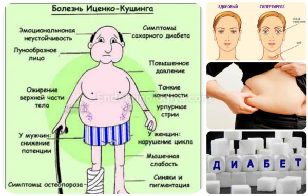 Норма кортизола в крови и причины отклонения гормона