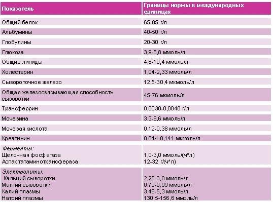 Остаточный азот в крови: диагностика и расшифровка результатов анализа