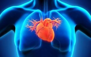 Давящая боль в области сердца: почему возникает и что делать?