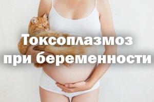 Хронический токсоплазмоз при беременности: симптомы инфекции и опасность для плода