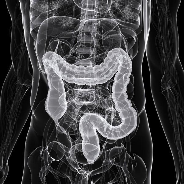 Как делают рентген кишечника с барием и о чем может