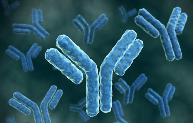 В анализе на токсоплазмоз lgg положительный - норма или патология?