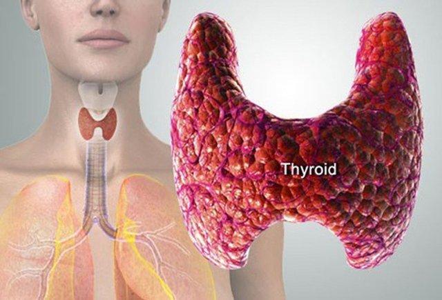 Увеличена щитовидная железа у ребенка: симптомы, диагностика и методы лечения