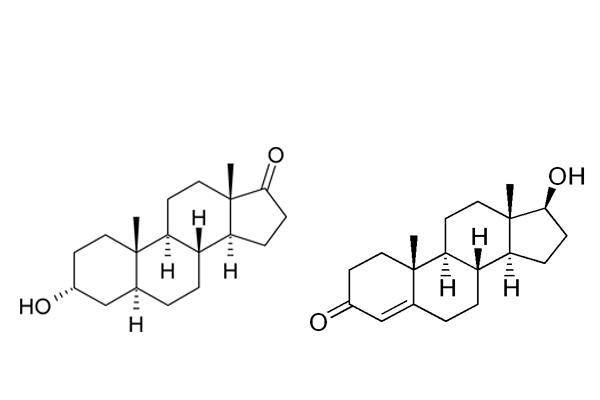 Анализ на андрогены у женщин: норма гормонов и причины отклонения от нормы