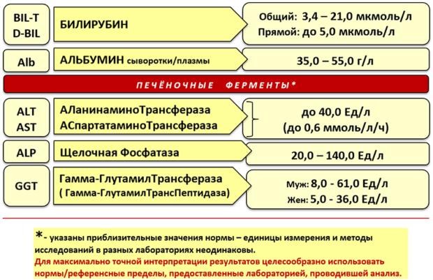 Как правильно сдавать печеночные пробы: подготовка и процедура анализа