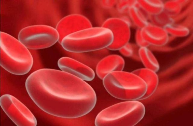 Как повысить уровень железа в крови - самые эффективные средства и рецепты