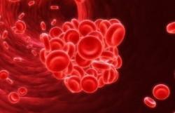 Почему появляются кровяные выделения во время беременности и когда нужен врач?