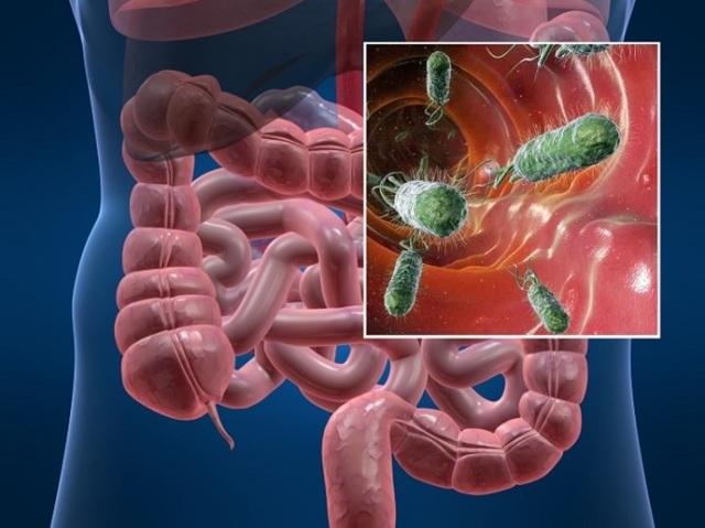 Алая кровь в кале - возможные заболевания и методы их лечения