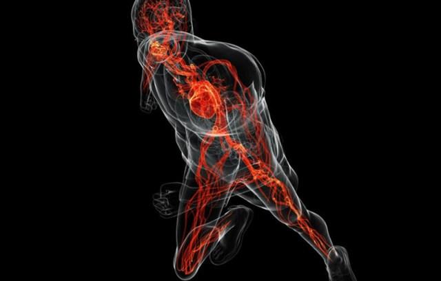 Как расшифровывается РПГА анализ крови, назначение и подготовка к анализу