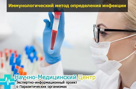 Цитомегаловирус в анализе крови - расшифровка: норма и патология
