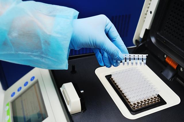 Анализ на микоплазму, особенности заболевания, проведение анализа и его расшифровка