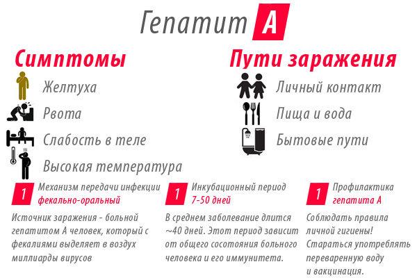 Тимоловая проба у детей: особенности проведения процедуры, расшифровка, норма и возможные заболевания
