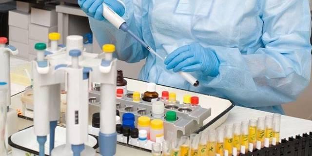 Анализ крови на иммунный статус: показания и особенности проведения