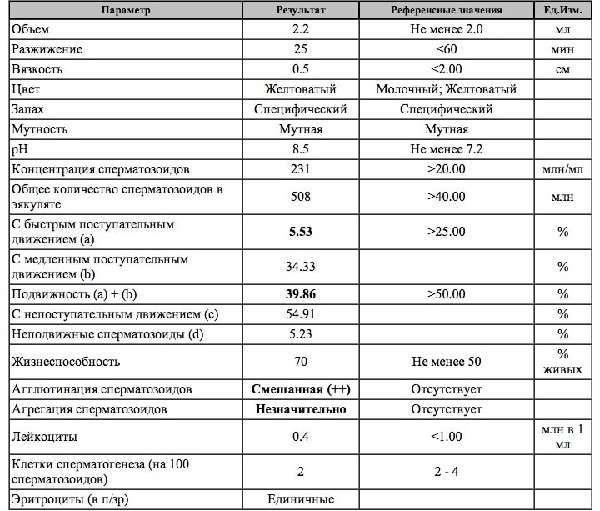 Спермограмма: значение, подготовка, процедура исследования и расшифровка результатов