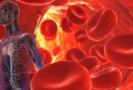 Анализ крови при раке кишечника: виды и описание анализов