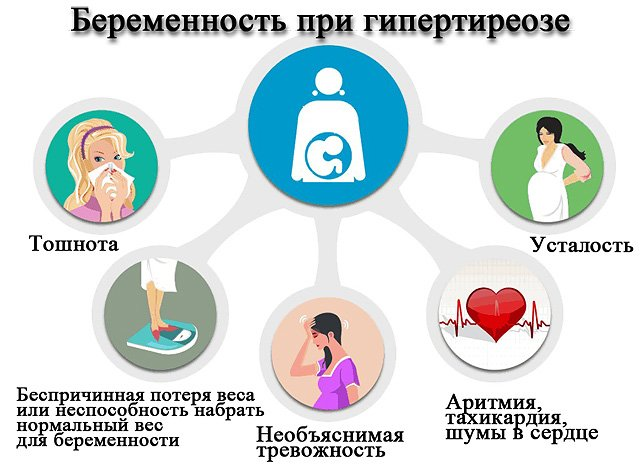 Беременность без щитовидной железы: репродуктивная система и ее изменения