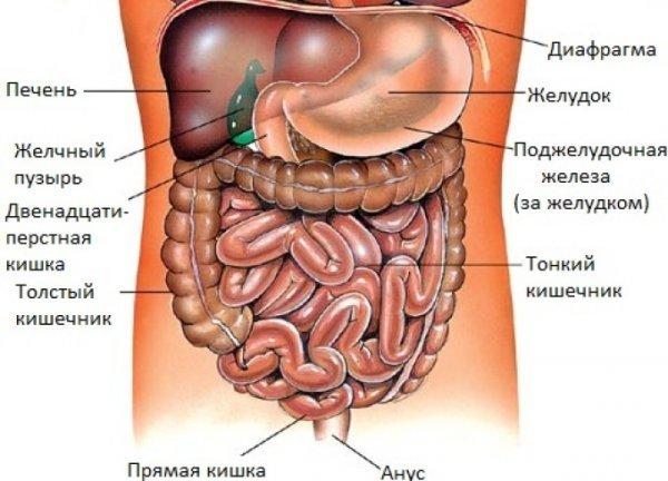 Боль в нижней части живота у женщин: причины и возможные заболевания