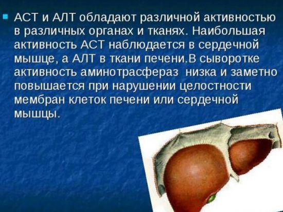 Биохимия крови - АЛТ: значение фермента и его норма