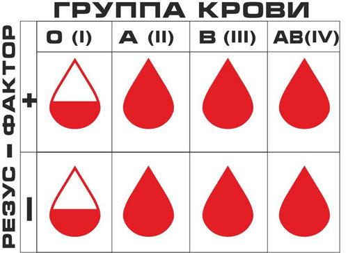 Группа крови и резус-фактор: где и как можно узнать?