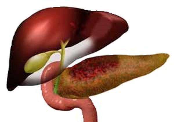 Амилаза в моче: диагностика фермента и расшифровка результатов исследования