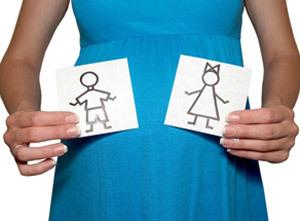 УЗИ при беременности: на каком сроке УЗИ покажет пол ребенка
