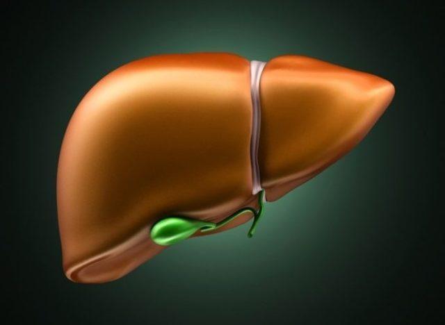 urea в биохимическом анализе крови: причины повышения и понижения