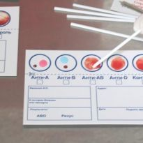 Как узнать группу крови без анализов
