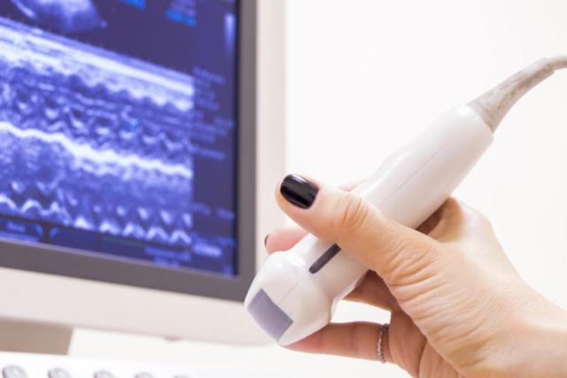 Расшифровка скрининга 1 триместра беременности: норма и возможные патологии плода