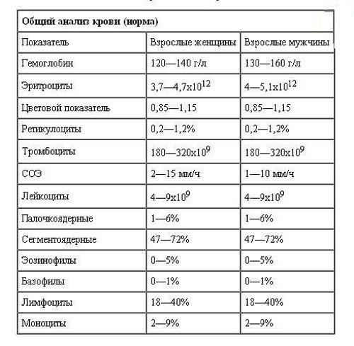 Анализы для поджелудочной железы и возможные заболевания органа
