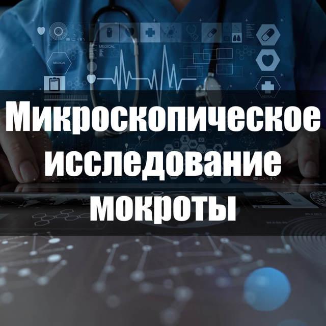 Микроскопическое исследование мокроты: назначение, процедура и расшифровка анализа